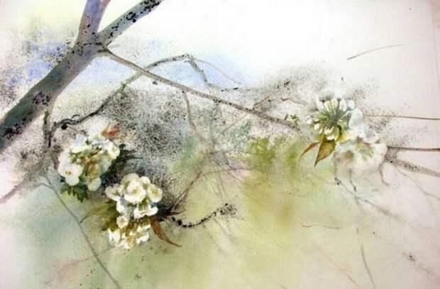 Эти нежные краски весны... великолепные акварельные пейзажи Рейн-Мари Пинчон