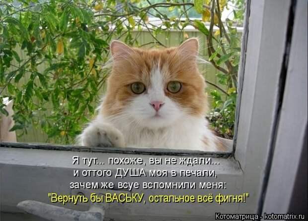 1480316107_13
