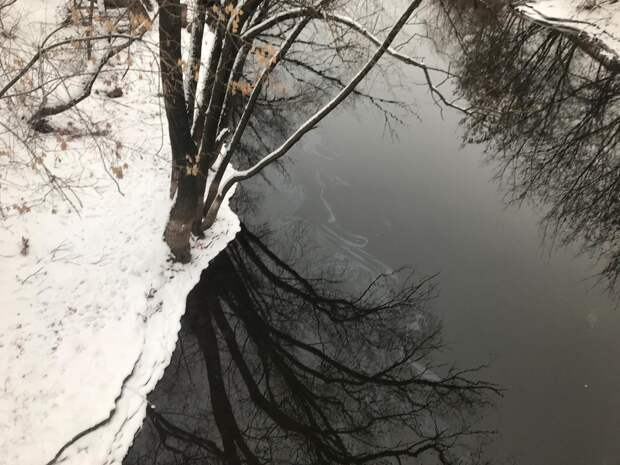 Маслянистые пятна обнаружили на реке Иж