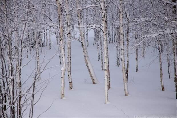 Малые Корелы зимой, которая уже совсем близко...