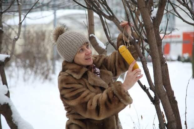 Проще всего - отварить кукурузу и повесить ее на ветку / Фото: Роман Балаев