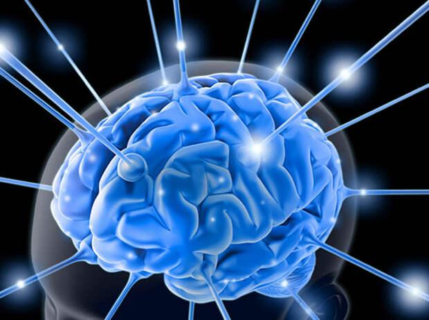 ЗДРАВОТДЕЛ. Бесплодные мысли разрушают мозг