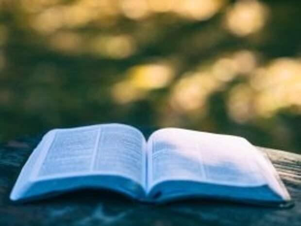 Читаем деловую книгу и рассматриваем мелочи