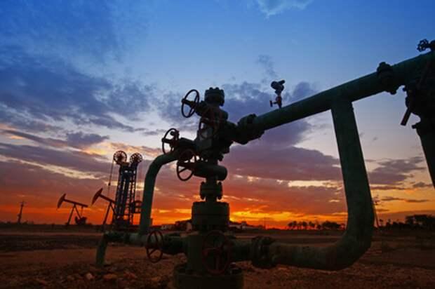 США увеличили закупку российской нефти