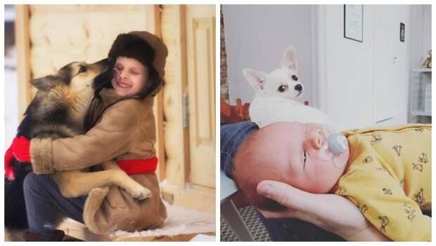 20 фото про яркую реакцию животных на детей дети, животные, кошка, ребенок, собака