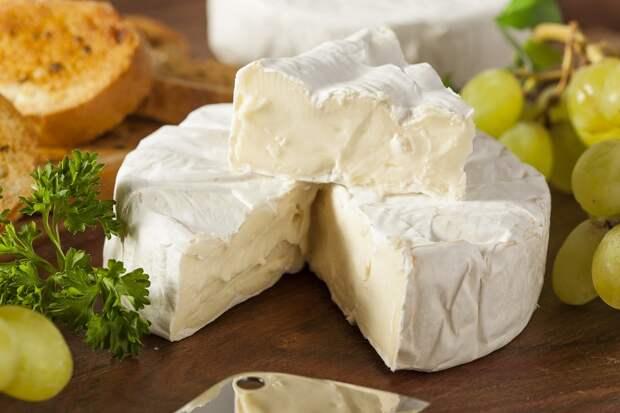 как подают сыр с плесенью