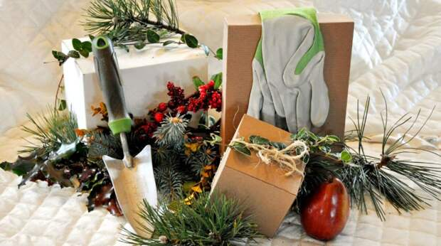 Что подарить заядлому дачнику на Новый год – идеи необычных подарков