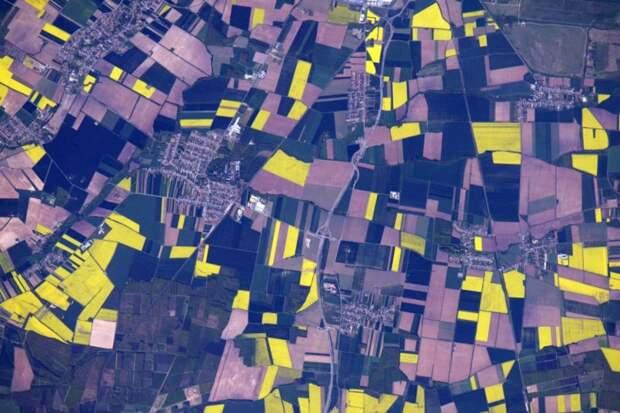 2. Ярко-желтые поля рапса в венгерском городе Сомбатхей земля, космонавт, космос
