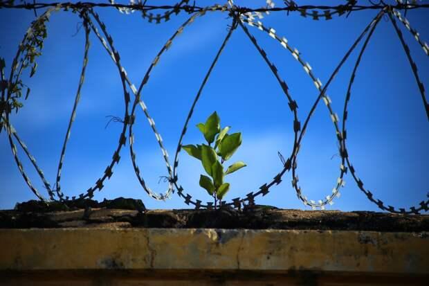 Как сквозь землю: заключённые сбежали из колонии в Дагестане с помощью подкопа