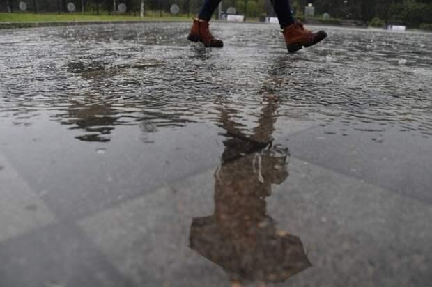 В Москве ожидаются дожди: за ближайшие дни выпадет месячная норма осадков