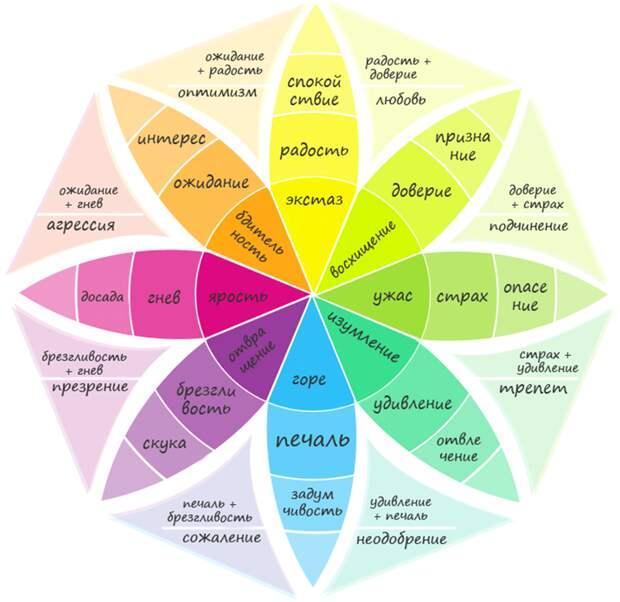 Шесть типов основных эмоций и их влияние на поведение человека
