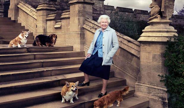 Королеве Елизавете II подарили двух корги