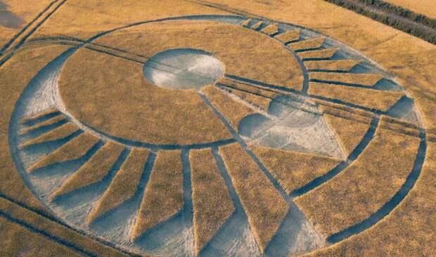 Первый в 2020 году рисунок на поле обнаружен на юге Англии