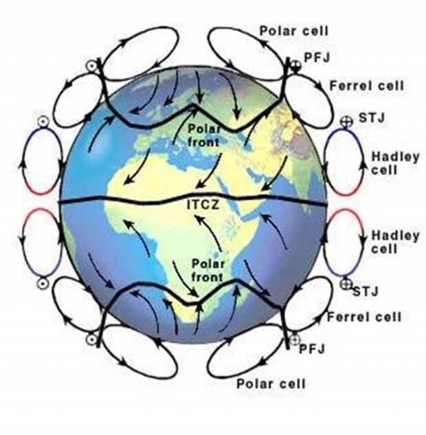 Рис. 14. Три циркуляционные ячейки в атмосфере современной Земли — Хадли, Феррела и Полярная. Показаны разделяющие их фронтальные зоны, господствующие приземные ветры и струйные течения в стратосфере