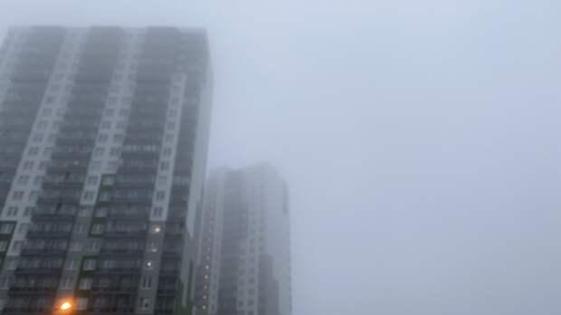 Сильный туман накроет Петербург ночью и утром 29 сентября