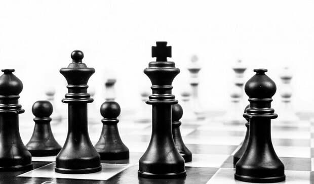 Первая международная шахматная академия появится вЕкатеринбурге
