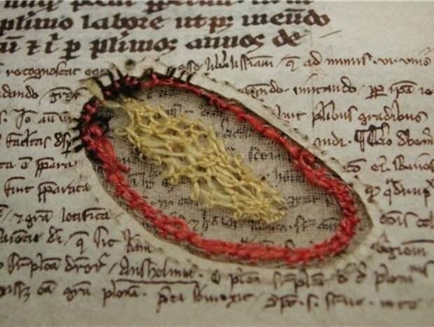 Как спасали порванные страницы пергамента.