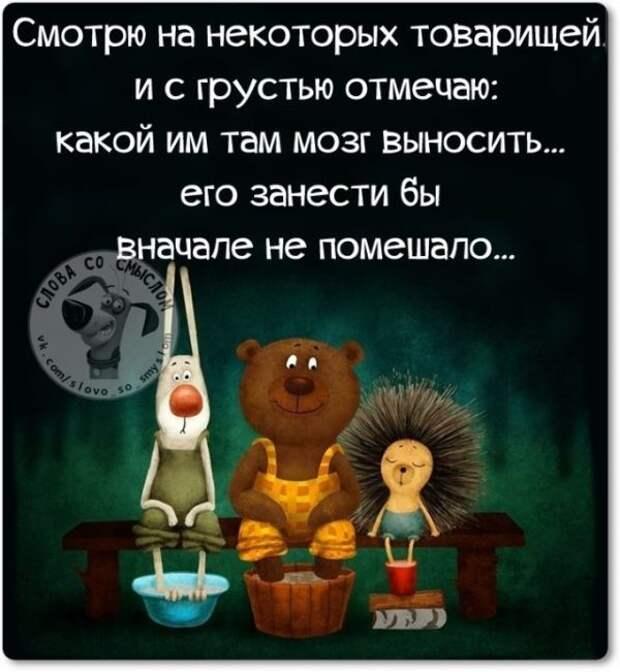 Глупость - это не грех, это дар Божий ...