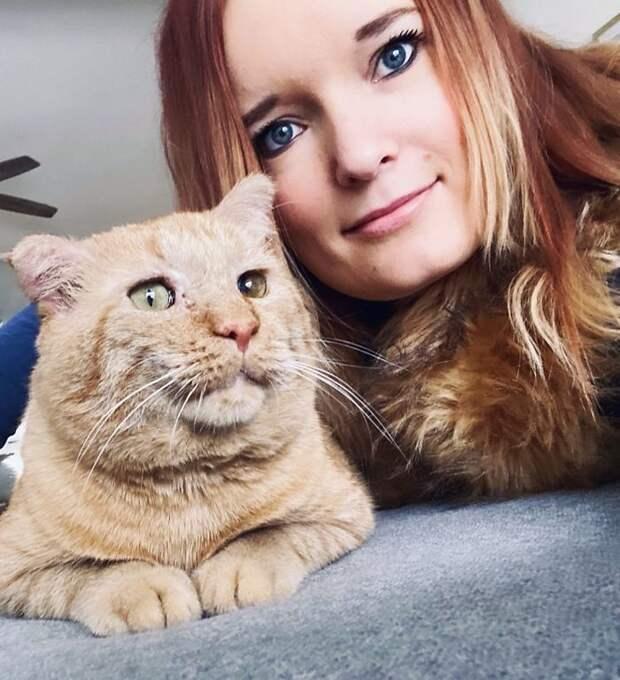 История Мистера Уиллиса — самого несчастного кота, ставшего самым счастливым