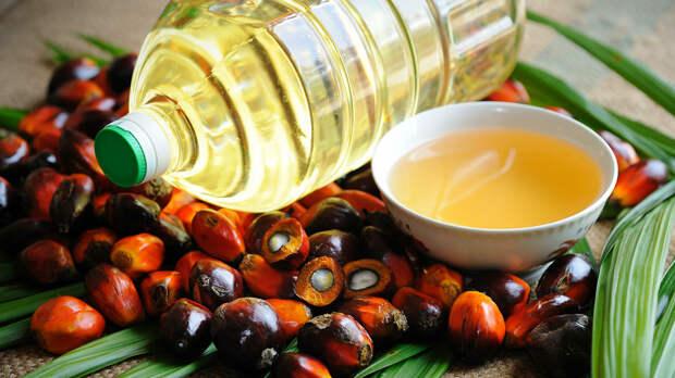 Названа главная опасность пальмового масла