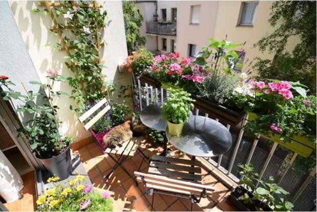 http://prostilno.ru/wp-content/uploads/2017/11/balkon.jpg