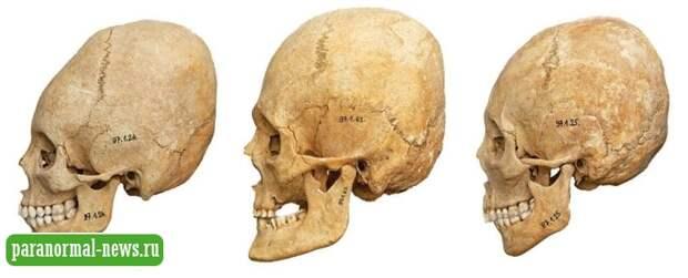 Уникальное древнее кладбище в Венгрии, на котором нашли полсотни удлиненных человеческих черепов