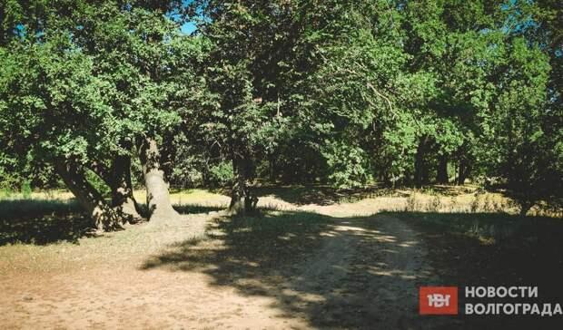 Посещение природных парков Волгоградской области сделают платным
