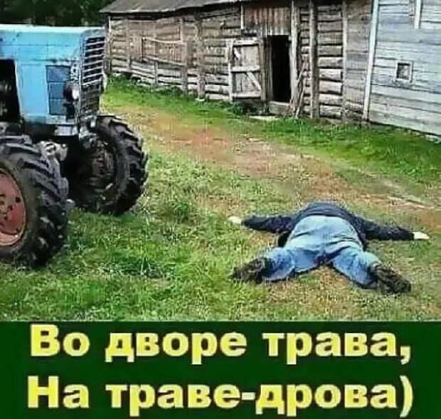 - 300 грамм сыра. - 500 рублей. - Почему так дорого?...