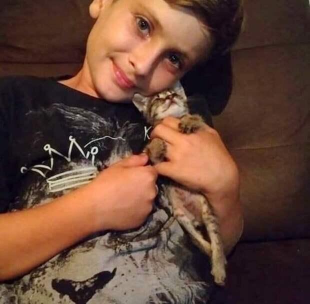 У людей появилась кошка, задние лапки которой не двигались — люди не понимали, что делать, но им помог 9-летний мальчик