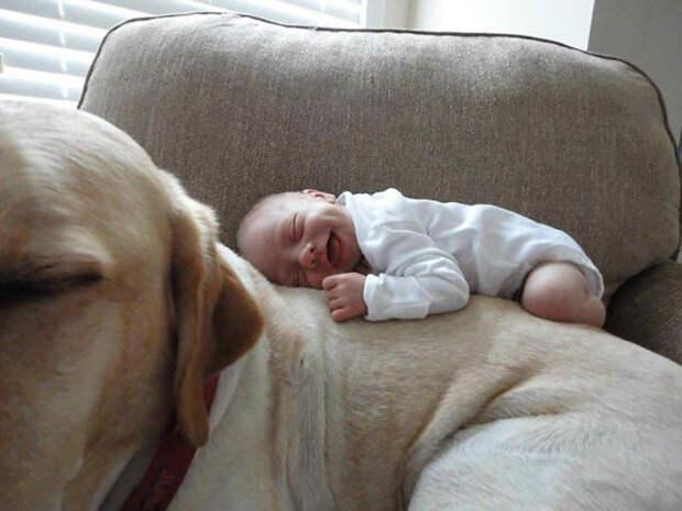Самая удобная постелька в мире.