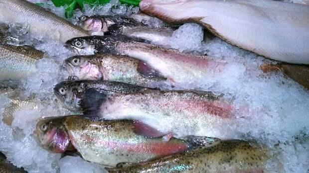 Россия нанесла Китаю ответный рыбный удар. В заложниках 20 тонн свежей форели