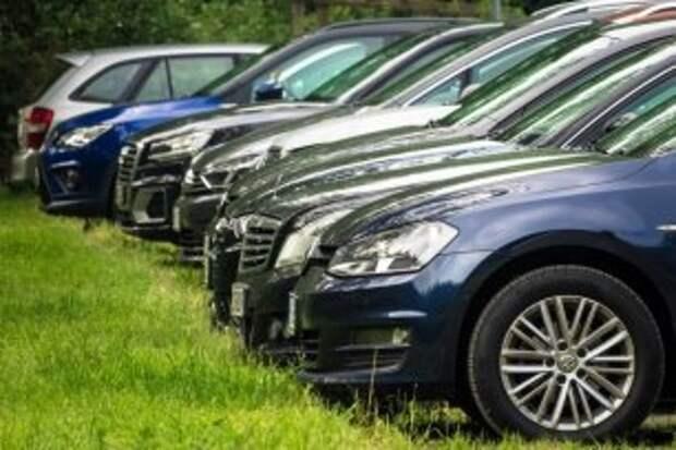 В июле у тропы здоровья в Зашекснинском районе начнут строить парковку