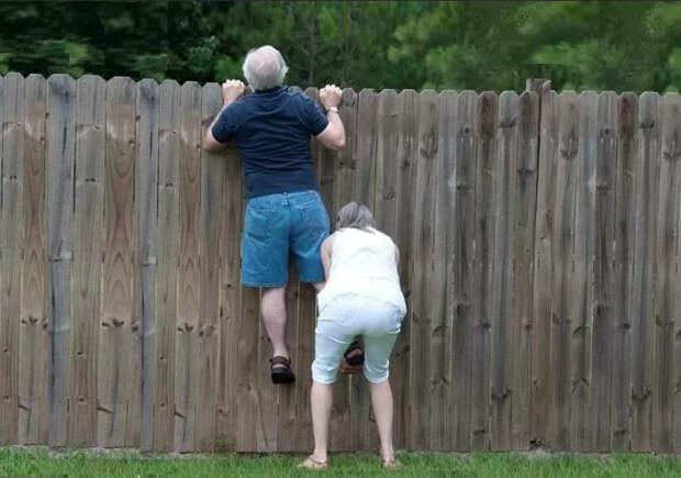 Опять они – теперь дачникам нужно следить не только за собой, но и за соседями