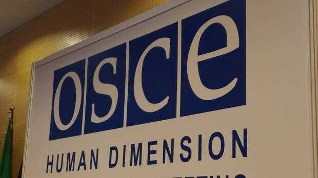 Глава российской делегации Гаврилов пригрозил покинуть форум ОБСЕ