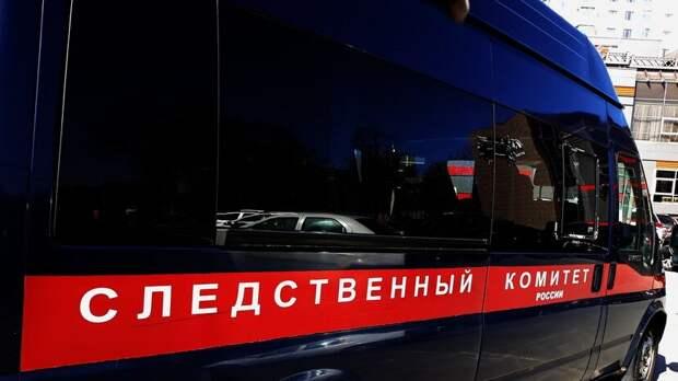 Российскую пенсионерку подозревают в жестоком убийстве двухлетней внучки