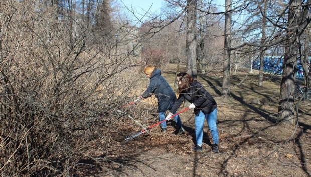 Листья и мусор собрали на Онежской набережной