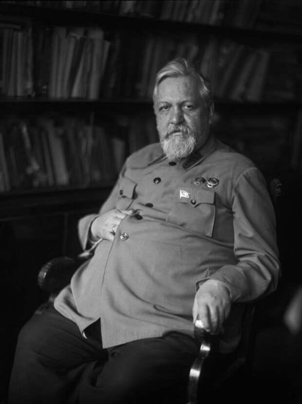 Владимир Образцов. / Фото: www.livejournal.com