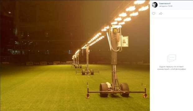 Фото дня: как растет трава на ВТБ-Арене