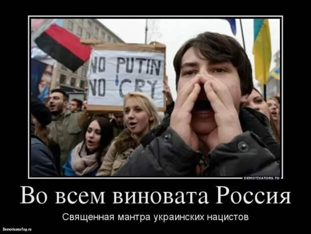 Пушков ответил на требования Киева о компенсации РФ нашествия медуз