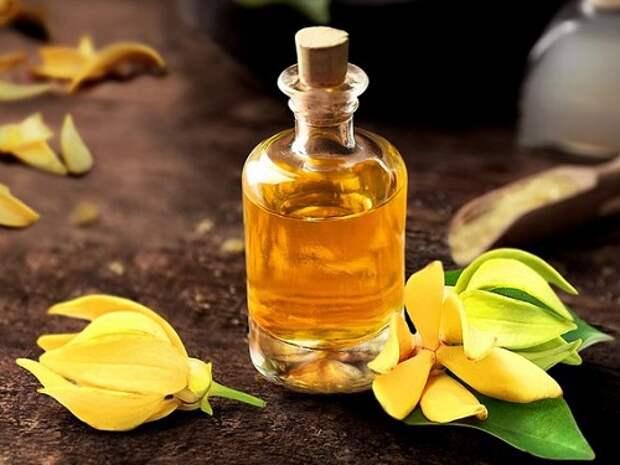 Ароматерапия:  запахи, которые привлекают деньги