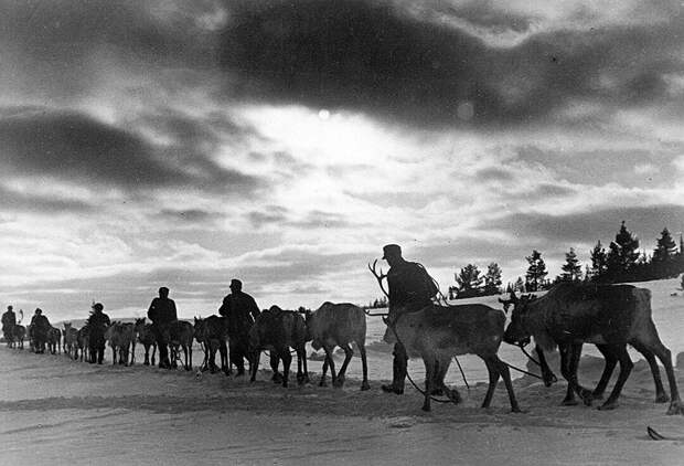 Летом и осенью 1941-го финны оккупировали Карелию