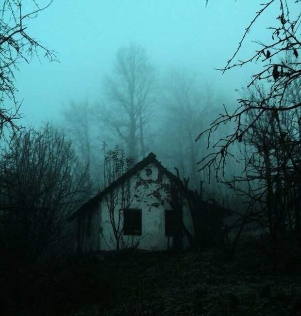 """Страшные истории на ночь. Мистические рассказы про лес. """"Не покидай"""" И.Объедков. Мистика. Ужасы."""