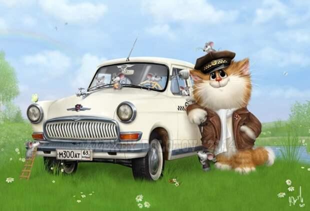 коты Алексея Долотова – 10