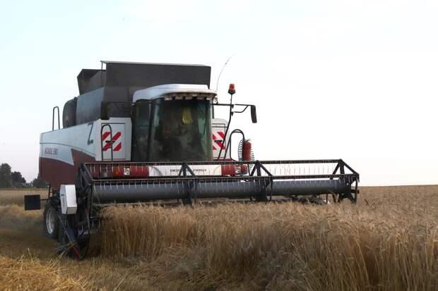 Фермеры Удмуртии дополнительно получат более 154 млн рублей в качестве грантов