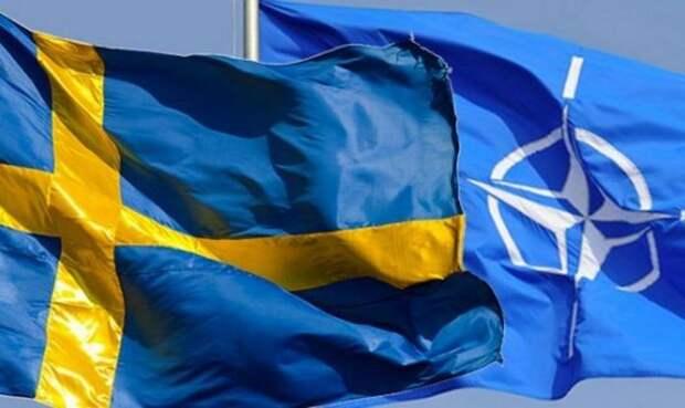 Надо в НАТО!