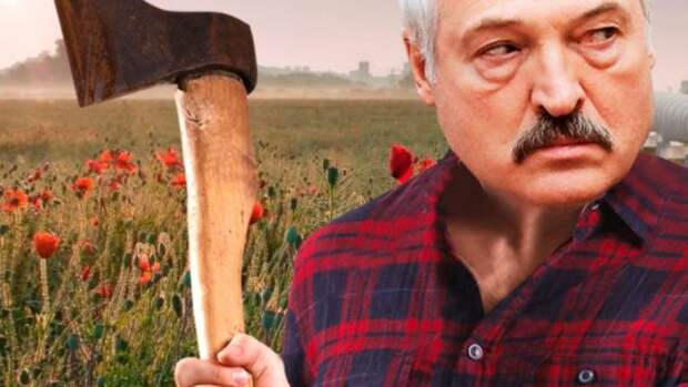 Угроза убийства Лукашенко: Названа причина арестов КГБ Белоруссии в Москве