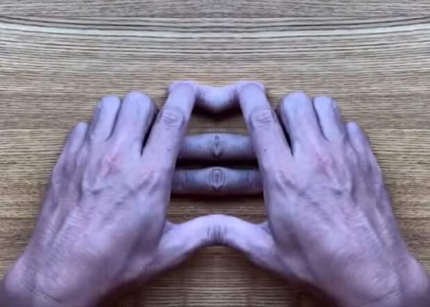 10 победителей конкурса «Лучшие оптические иллюзии 2019 года»