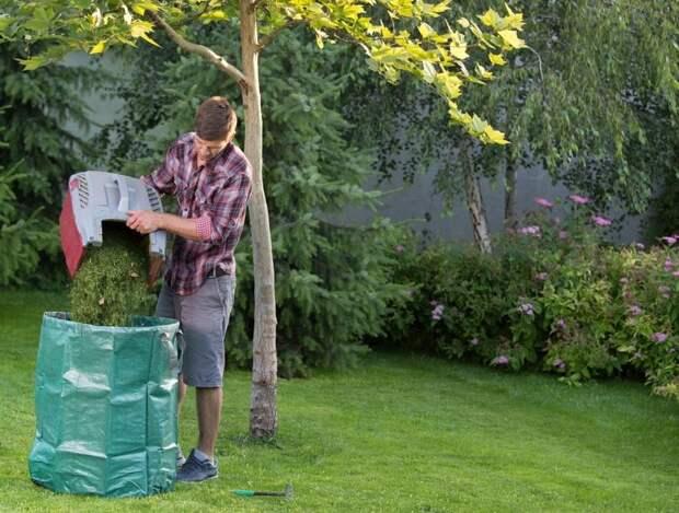 8 способов использования скошенной газонной травы