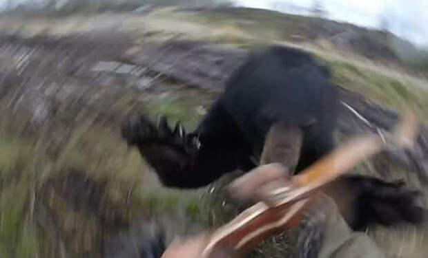 Глупый охотник вышел в лес с луком и встретил черного медведя