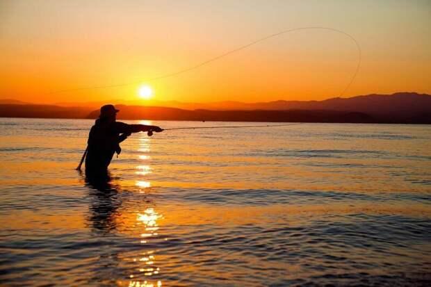 Любителей мушиной охоты не забываем  лето, природа, рыбалка, хобби